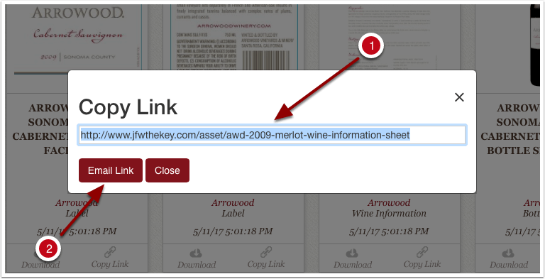 Copy link modal with link to asset and email link buttons